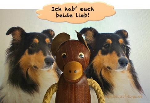 Hoertext_Eifersuechtige_Hunde_Deutsch_to_go_CS_IPTC