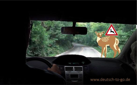 Hoertext_Vorsicht_Wildwechsel_Deutsch_to_go_IP_IPTC