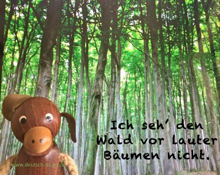 Hoertext_Waldeslust_oder_Mensch_und_Baum_Deutsch_to_go_CS_IPTC