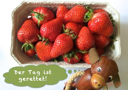 Hoertext_Mögen_Sie_Erdbeeren_Deutsch_to_go_CS_IPTC