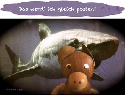 Hoertext_Was_ist_gefaehrlicher_Selfie_oder_Hai_Deutsch_to_go_CS_
